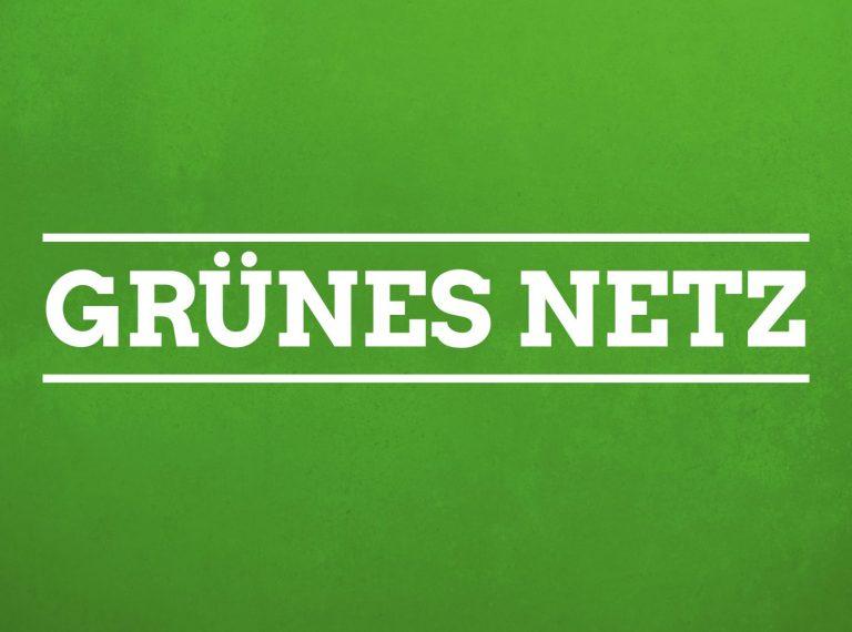 Grünes Netz Bild