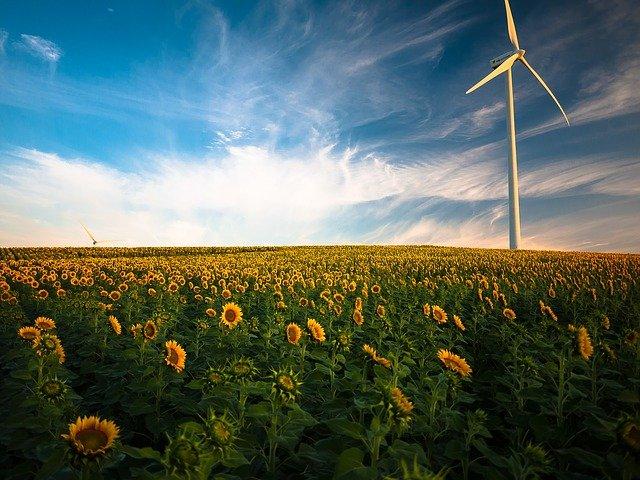 Bundesverfassungsgericht trifft historische Entscheidung zum Klimaschutzgesetz